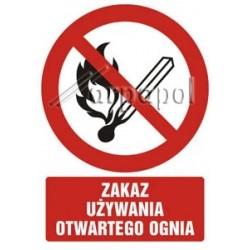 Z.GC Zakaz używania otw. ognia 29,7x21 037 DJ PN